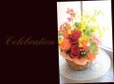 赤バラと季節の花のアレンジメント 574