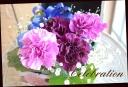 メモリーボックス 幸せの青い花 アンティークBR柄