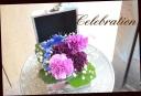 メモリーボックス 幸せの青い花  パンジー柄