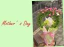 マネケンワッフルとバラ(スマ)の花鉢セット