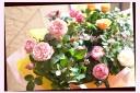 母の日ギフト ミニバラ5鉢セット