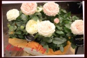 母の日の贈り物に バラの寄せ鉢