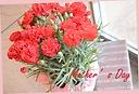 マネケンワッフルとカゴ付赤カーネーションの花鉢