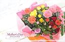 バラの花鉢5個セット♪