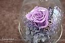プリザーブドフラワー バードドーム紫