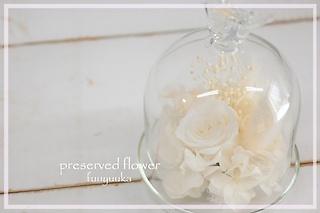 プリザーブドフラワー / バードドーム ホワイト