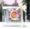 世界にひとつだけの花~ガラスのフレーム
