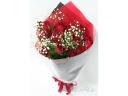 【15本のバラ】赤バラとカスミソウ