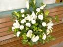 お気持ちを お届けいたします 白花とグリーン