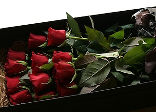 Dozen Roses Box Bouquet