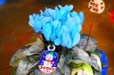 青いシクラメン (染め)