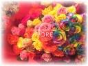 レインボーローズルシア/トロピカル花束