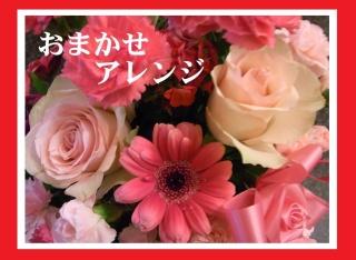 ♪ピンク・レッド系おまかせアレンジ♪