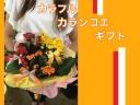 ボリューミー☆カラフルカランコエギフト