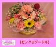 ☆~☆ピンクプードル☆~☆