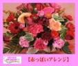 ☆~☆赤っぽいアレンジ☆~☆