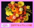 ☆~☆カラフル・アレンジ☆~☆
