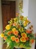 Shining�@Yellow