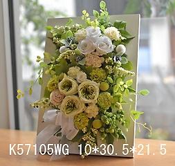 K57105WG*壁掛けホワイトグリーン*