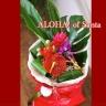 Aloha!ofSanta