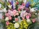 開店 祝い花 全般」
