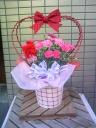 ラブリーハートのカーネーション(5号花鉢)