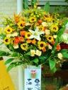 スタンド花(イエロー・オレンジ系)開店祝い・御祝