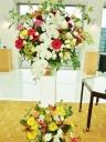 胡蝶蘭入り◆開店・お祝いスタンド・2段◆色ミックス