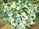 カサブランカと白バラの供花アレンジ・大『泉』白青系
