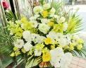 胡蝶蘭とバラの供花アレンジ・大『輝き』・白黄