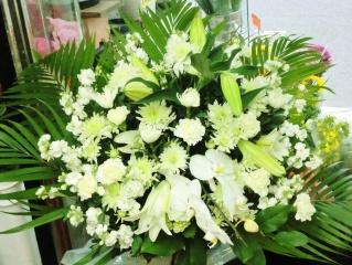 胡蝶蘭とカサブランカの供花アレンジ・特大『響き』