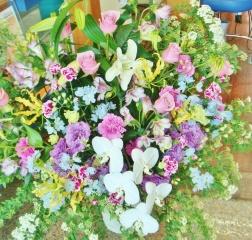 胡蝶蘭入り◆印象的なブルー系◆開店・お祝スタンド花