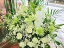 『白鳳』カサブランカと胡蝶蘭の供花アレンジ・大