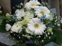 【されや】 メモリアル 白花