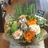 ローズマリーのハーブガーデン(ローズマリーの鉢花)