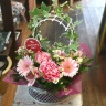 アイビーのアーチガーデン(アイビーの鉢花セット)