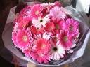 ガーベラいっぱいの花束(ピンク)