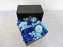 Treasure Box blue