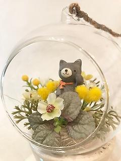 こんにちわくまちゃん☆小さなお花畑
