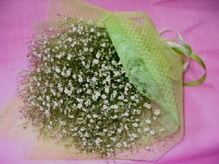 ふんわり真っ白カスミソウの花束