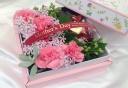 野の花の贈り物・・・いちごの呼吸チョコレート付