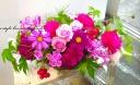 こもれびピンクの花篭