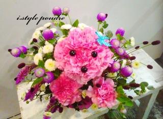 ピンクプードル 野の花バスケット
