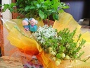 敬老の日☆クランベリーと草花のセット