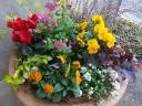 寄せ植え「季節のお花の寄せ植え」
