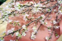 花束「cherry blossoms」