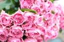 こだわりのピンクバラの花束