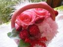 ☆SAKURA☆Mother's Pink
