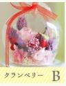 姫りんご クランベリー