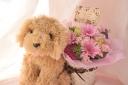 ワンちゃんがお花をお届け♪